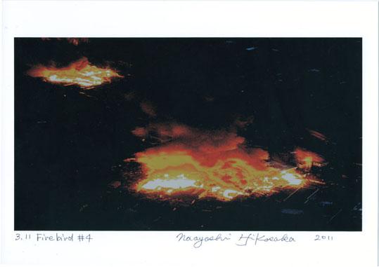 firebird#4.jpg