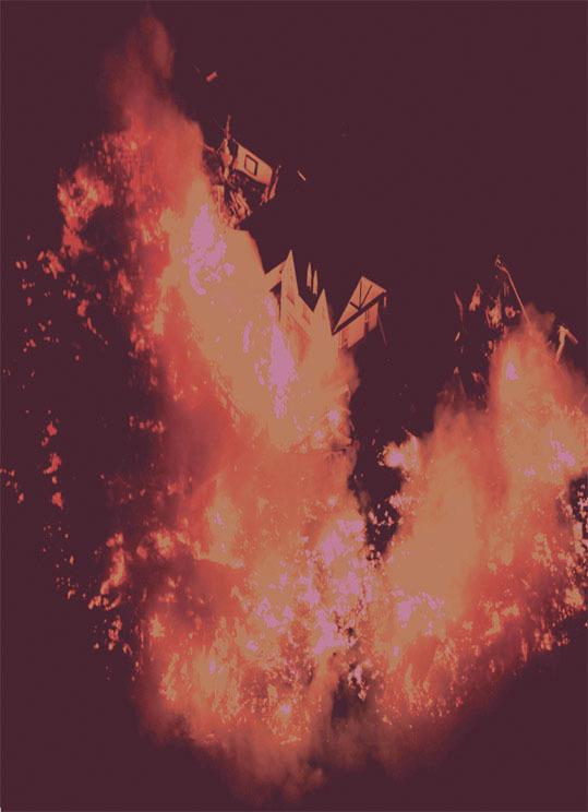 彦坂尚嘉3.11火の鳥#2jpg.jpg