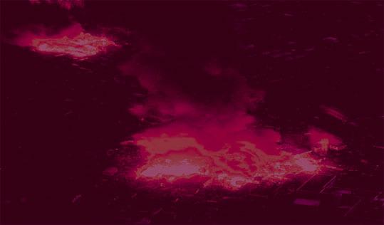 彦坂尚嘉3.11火の鳥#4jpg.jpg